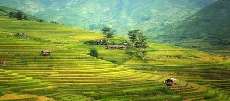yuan yang: Beautiful landscape about terraced rice field in Yen Bai province, Vietnam Stock Photo