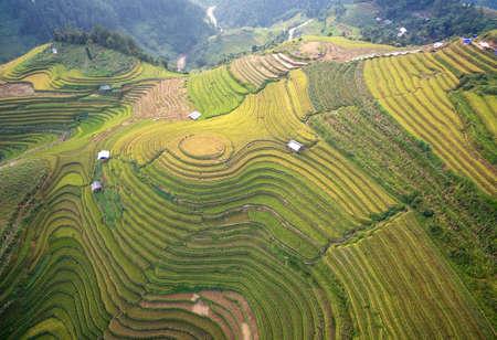 田んぼの上空からの眺めは、Mu 倉チャイ、YenBai、ベトナムの棚田。田んぼは、ノース ウエストの Vietnam.Vietnam 風景で収穫を準備します。 写真素材 - 75710563