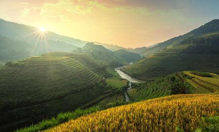 Green Rice fields on terraced in Mu Chang Chai, Vietnam Rice fields prepare the harvest at Northwest Vietnam.Vietnam landscapes.