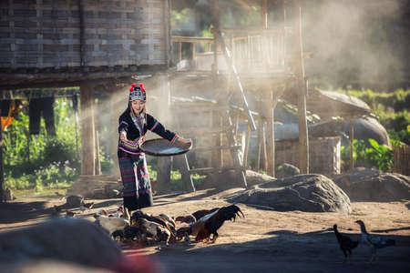Asian girls feeding chickens at Laos countryside Фото со стока