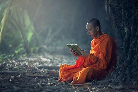 Monk reading book, Thailand. Zdjęcie Seryjne
