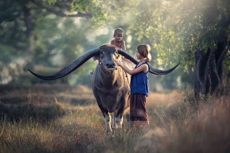 Asian woman farmer with son riding a buffalo in the field countryside of Thailand