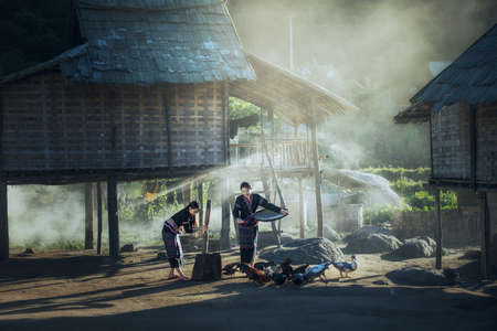Asian women worker winnowing rice separate between rice and rice husk and feeding chickens at Laos countryside