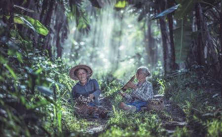 Aziatische oude vrouw aan het werk in het regenwoud, Thailand