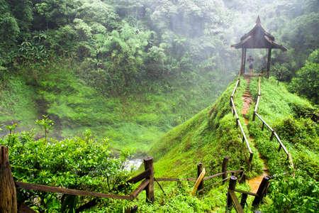 森をパビリオンします。ラオスの自然。
