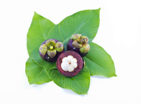 Garcinia Mangostana, on white background