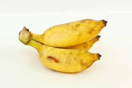 cultivated: Cultivated banana on a white background  Stock Photo