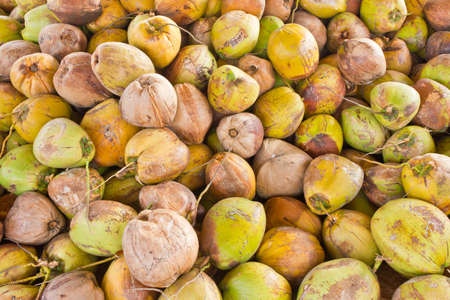 Image of fresh organic green coconuts Stock Photo