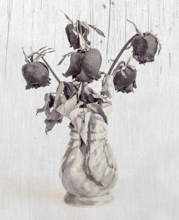 Dried roses in a vase Effect black and white photo