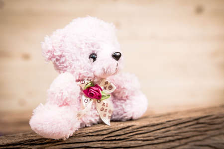 Pink Teddy Bear toy alone on wood in front brown background Stock Photo