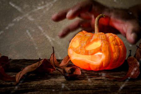 wood spider: closeup of scary halloween pumpkins