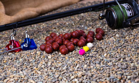 atrapar: carpa captura de cebos