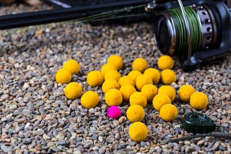 by catch: carpa captura de cebos