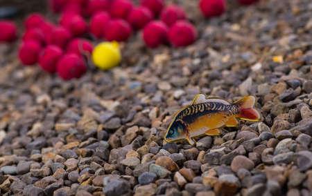 atrapar: catch carp on baits
