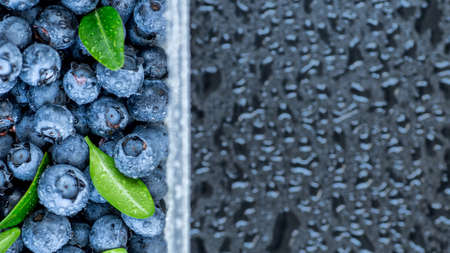 Fresh blueberries background with copy space for your text. Vegan and vegetarian concept. Macro texture of blueberry berries.Texture blueberry berries close up.Copyspace for your text