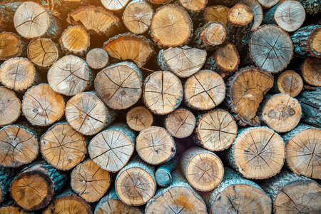 Wood burning stove. Firewood for furnace heating. Warehouse for firewood for stove.Natural wooden background - closeup of chopped firewood. Firewood stacked and prepared for winter Pile of wood logs