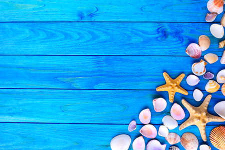 Summer time concept Flat lay composition with beautiful starfish and sea shells on blue wooden table, space for text,Sea shells
