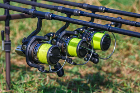 Carp spinning reel angling rods on pod standing. Carp Rods,Carpfishing session at the Lake.Professional fishing equipment