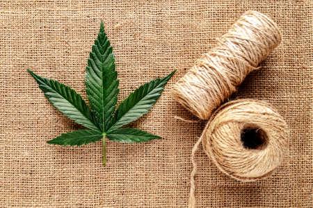 Marijuana leafs and cannabis hemp fibers isolated,Cannabis indica texture on background.