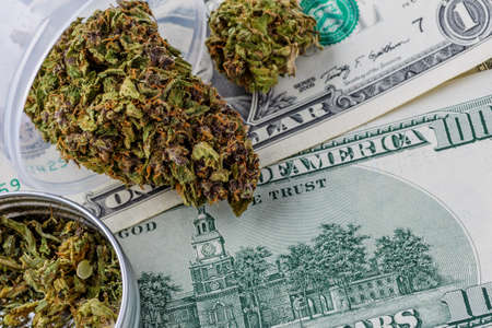Cannabis herb and leaves for treatment.Buds. Skunk. cbd, hemp buds and money,Closeup of assorted American banknotes.World economic crisis associated with coronovirus.