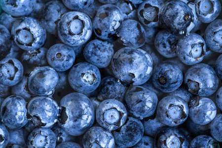 Blueberries floating in water with bubbles. Fresh blueberries background with copy space for your text. Vegan and vegetarian concept.Texture blueberry berries close up