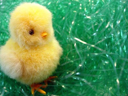 A chick on Easter grass
