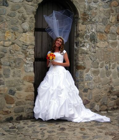 A brides veil blowing in the wind Stock Photo