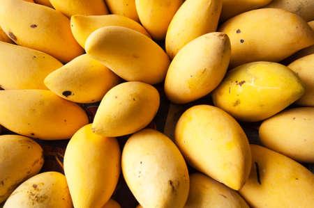 mango fruta: Mont�n de mango maduro