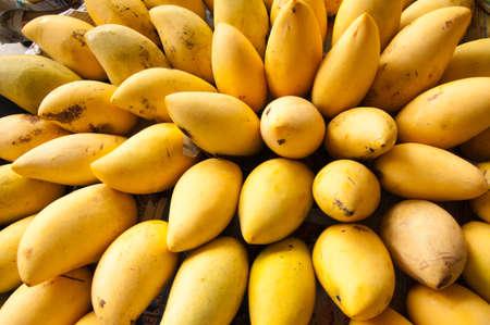 Bunch of ripe mango  photo