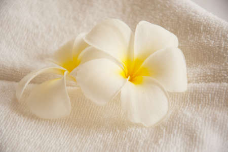 leelawadee: leelawadee in thai spa very nice soft light