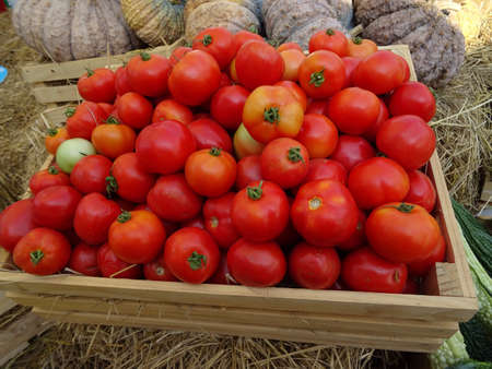 Red tomato in wood box