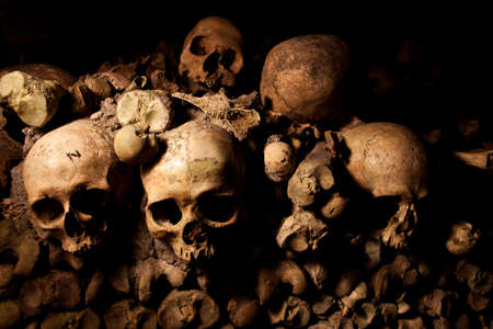 mummified: Human skulls