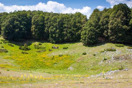 apennines: Summer mountain landscape
