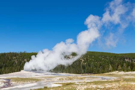 faithful: Old Faithful geyser eruption into Yellowstone National Park, USA