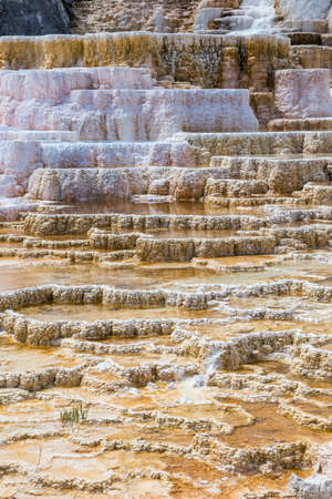 carbonate: Mammoth Hot Spings in Yellowstone National Park, Wyoming, USA