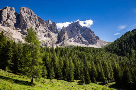 View of Val Venegia in summer with the Pale di San Martino in background. Dolomites, northern Italy.