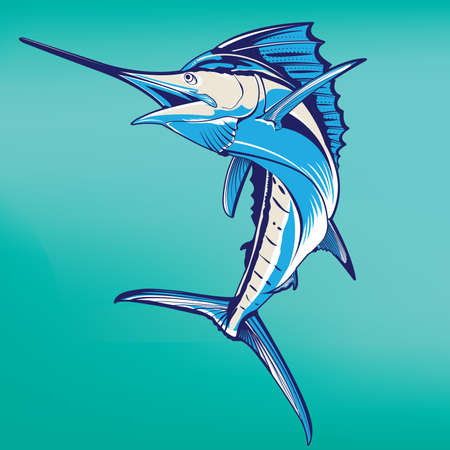 sailfish: swordfish  Illustration