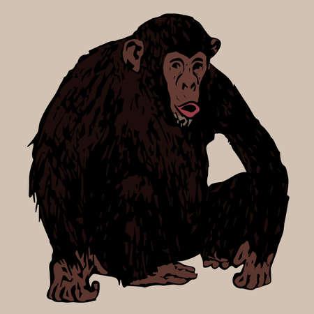 sedentario: chimpancé joven fuerte sedentaria