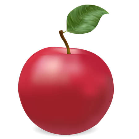 ripe: photorealistic red ripe apple with leaf