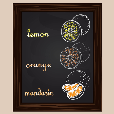 lemon slice: lemon mandarin  and  orange  drawn by a chalk  on a black board Illustration