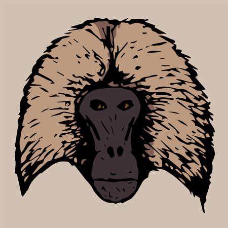 baboon: head baboon gelada on cream color background Illustration