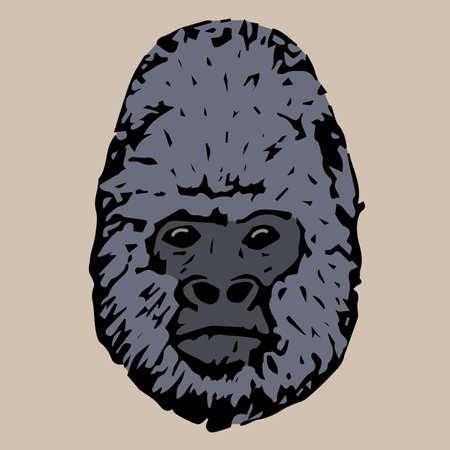 gorila: head gorila on cream color background