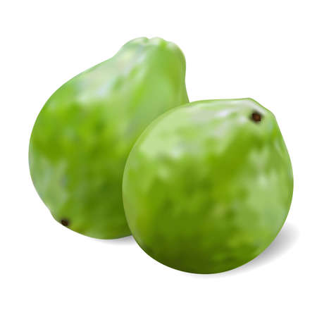 photorealism: two ripe juicy guavas on a white background Illustration