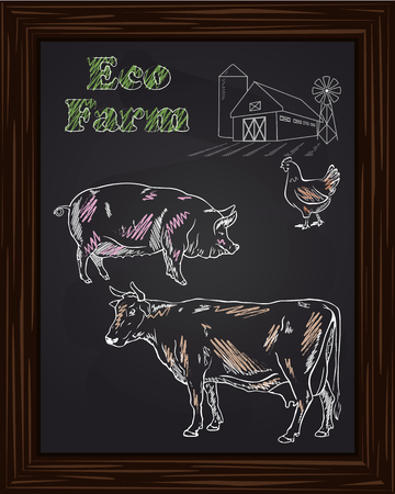 eco farm with chicken, cow, pig drawn in chalk