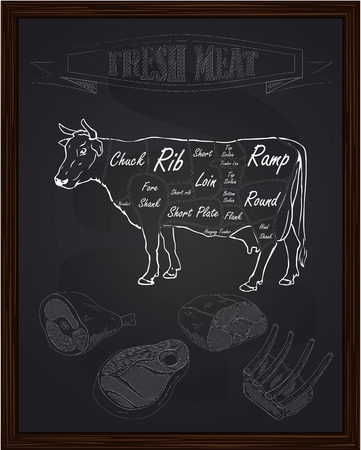 cut short: beef scheme and pieces of meat drawing with chalk Illustration