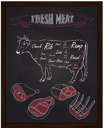 beef scheme and pieces of meat drawing with chalk