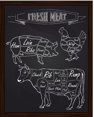 sectie diagram van een varken koe en kip getekend met krijt