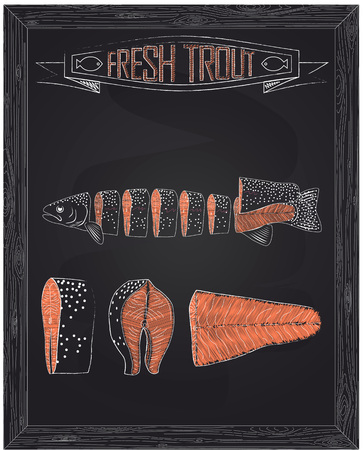 trout: cutting scheme fresh trout drawing in the chalk