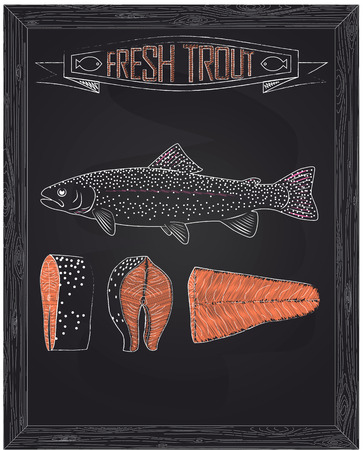 fillet steak: fresh whole one young trout , fillets and steaks drawing in the chalk Illustration
