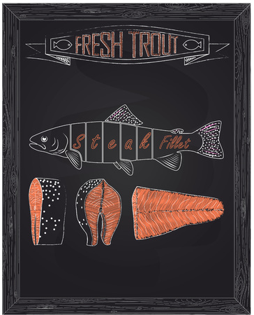 cutting scheme fresh trout drawing in the chalk